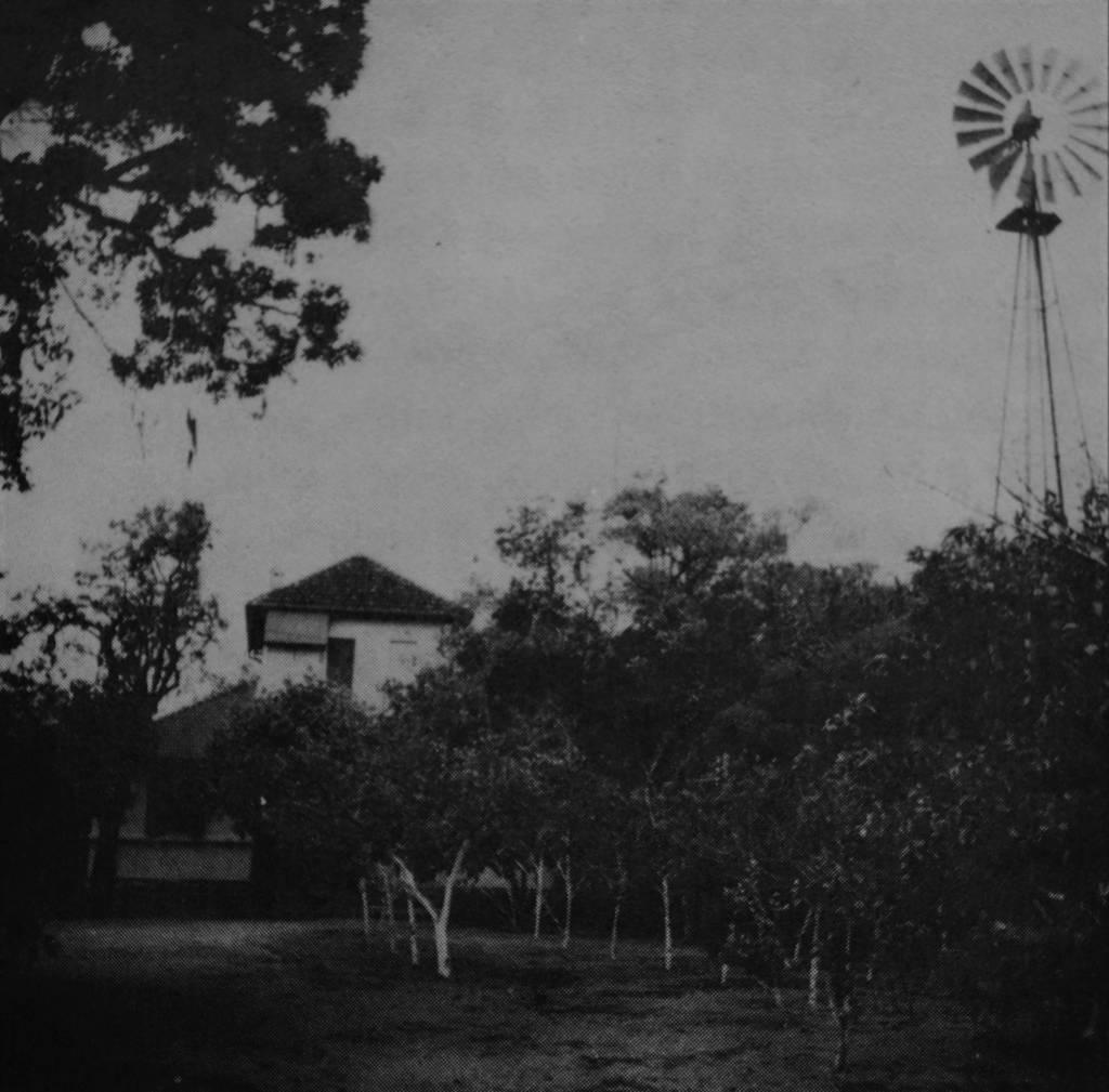 Quintal e pomar da chácara adquirida por Leopoldo Geyer. O cata-vento permaneceu por muitos anos